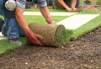 blythewood sod installation