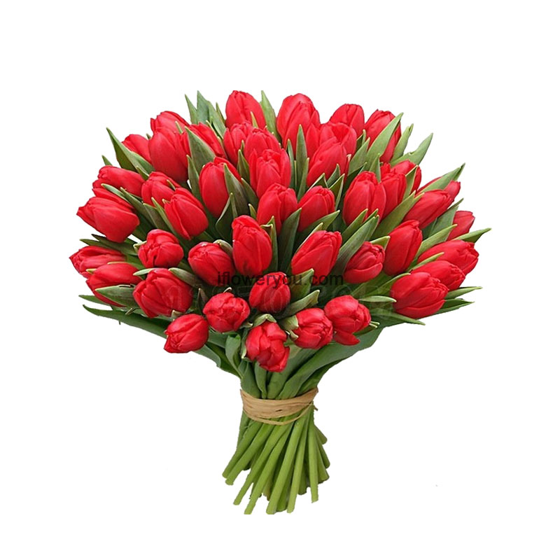 50 Red Tulips Gorgeous Bouquet Ifloweryou Flowers