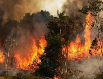 ifmat - Massive fires rage in Iran due to regime inaction