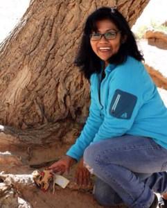 Anasazi Ruins FBR X