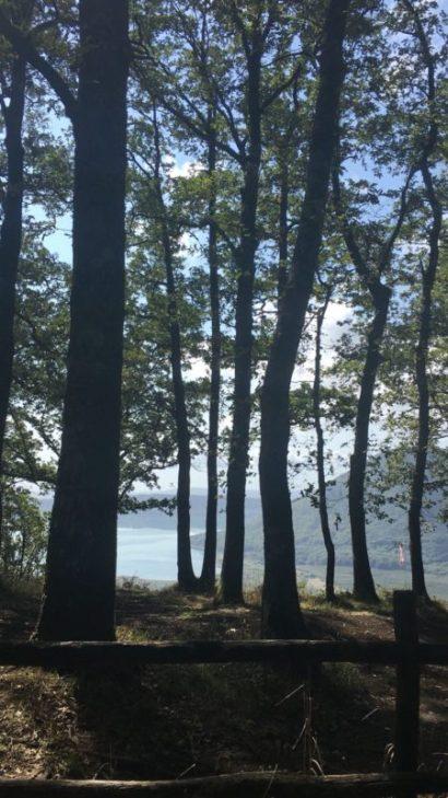 In macchina verso Viterbo per una giornata si incontra una bellissima riserva naturale