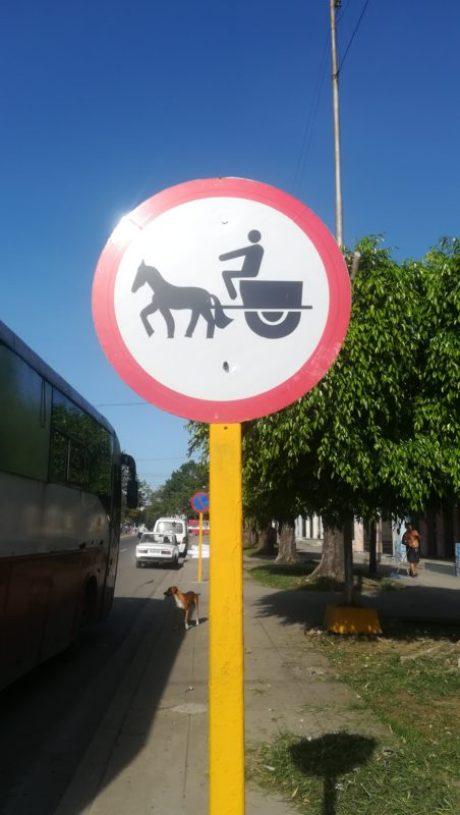 Segnali-stradali-divertenti