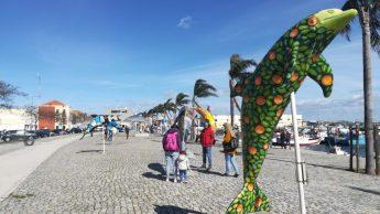 I Delfini simbolo di Setúbal