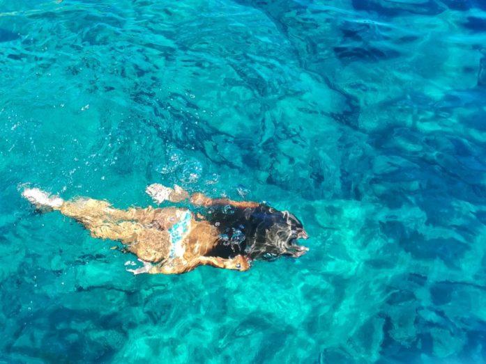 nuotare e visitare isola del iglio