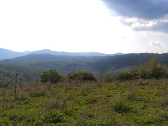 panorama sulla natura