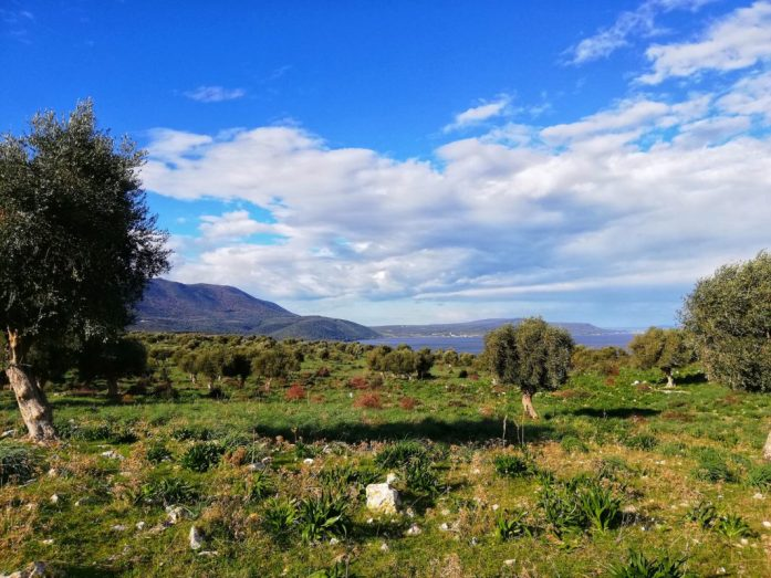 natura gargano nei pressi dei borghi del lago di varano