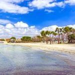spiagge vicino a porto cesareo