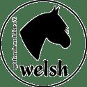 Welsh Sportverein Westfalen