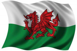 red-dragon-welsh-flag-1