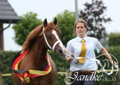 Foto Tierfotografie Jandke (56)