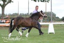 Foto Tierfotografie Jandke (74)
