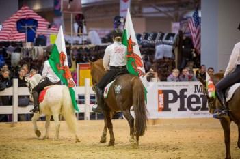 IG Welsh Pferd & Jagd 2016 (2)