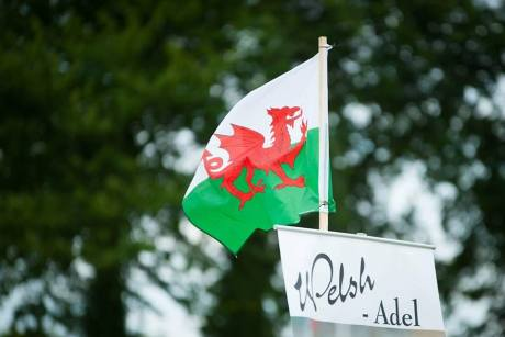 AH-Welsh-Flai