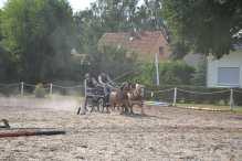 RS Sachsen-Thüringen 2018 (3)