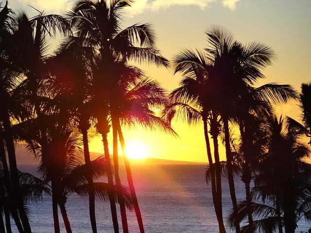 Aloha!- Gay Hawaii