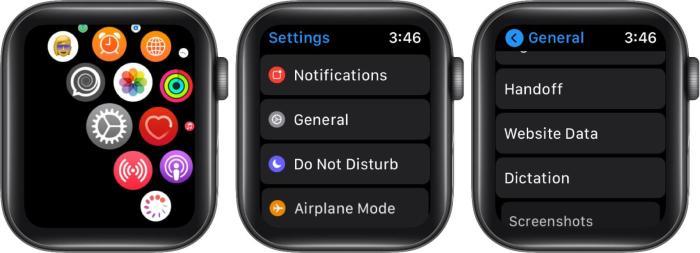 откройте настройки нажмите на общие, а затем нажмите на данные веб-сайта на Apple Watch