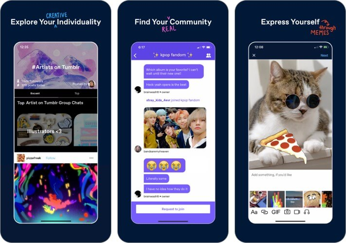 Снимок экрана приложения Tumblr для iPhone и iPad GIF Maker