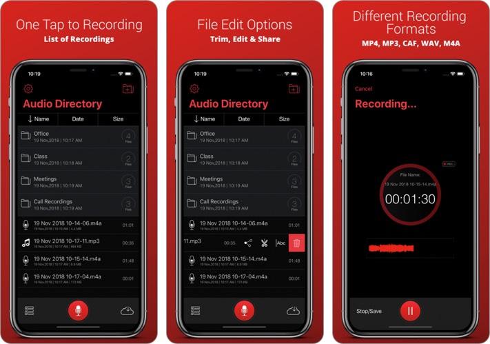 Recorder Plus - Скриншот приложения для записи голоса для iPhone и iPad