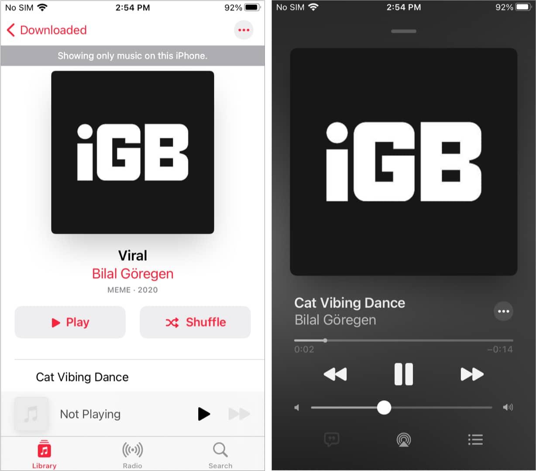 Аудиофайл на iPhone со всеми метаданными