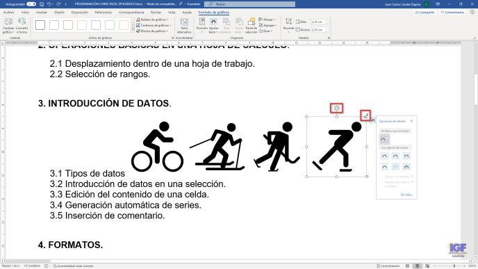 Insertar varios iconos en Word - igf.es