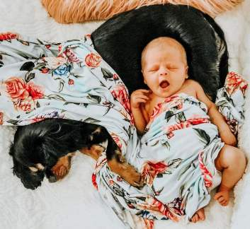 Cute-Pictures-Dogs-Napping-Kids-Babies-11