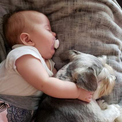 Cute-Pictures-Dogs-Napping-Kids-Babies-12