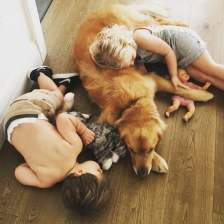 Cute-Pictures-Dogs-Napping-Kids-Babies-3