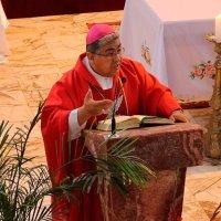 «A ejemplo de San Sebastián, descubramos cuál es nuestra Misión» Mons. Oscar Aparicio