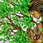 ¿Ecología o ecologismo?