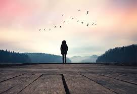 Querida soledad: gracias por permitirme entender cuán necesaria eres