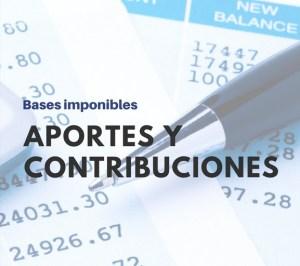 Bases imponibles aportes y contribuciones ANSEs resolucion