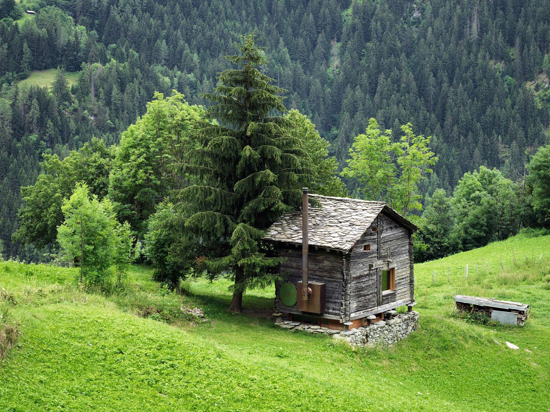 A Tiny Cabin In The Swiss Alps  IGNANT