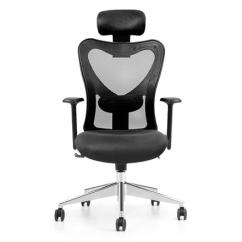 Back Support For Office Chair Malaysia Dinosaur Bean Bag High Amour Mesh Products Igreen