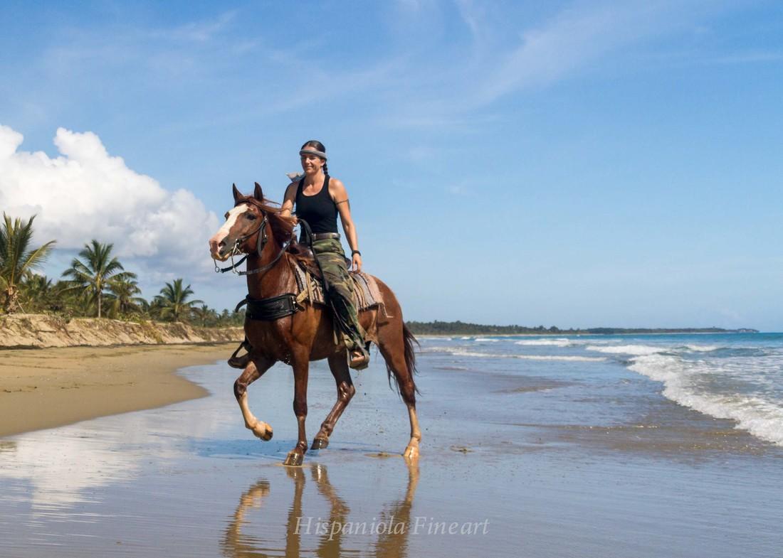 Horseback Riding  IGUANA MAMA Adventure Tours  Shore