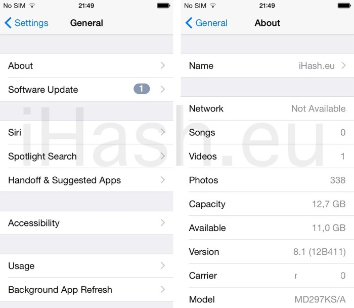 iPhone Settings general about