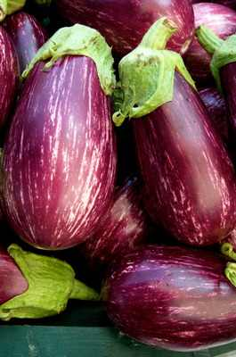 Eggplant Recipes King of Middle Eastern Vegetables  Faye
