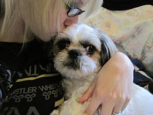 Kristen Toronto with dog