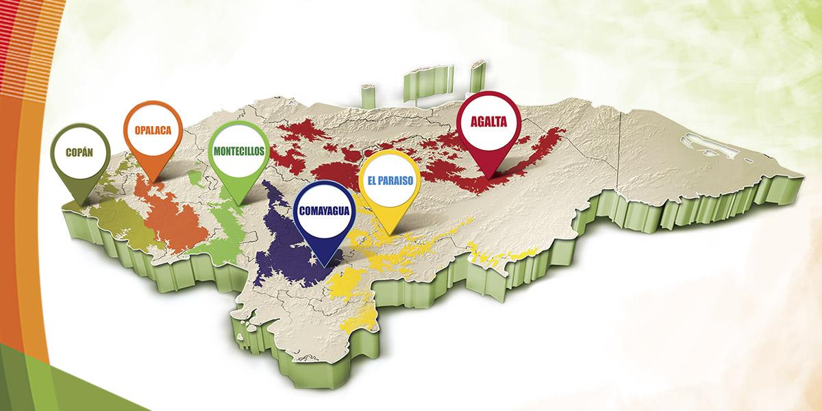 Regiones Cafetaleras