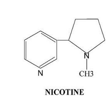 How long does Nicotine stay in your System (Blood, Hair