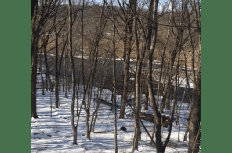 woods in bensalem pennsylvania