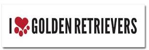 Golden Retriever Car Magnet