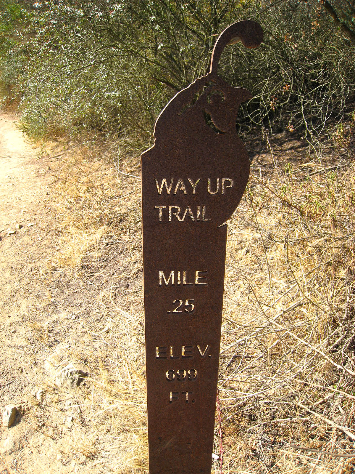 The Way Up Trail  Elfin Forest Recreational Area