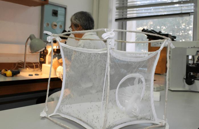 Henrique Silveira no laboratório