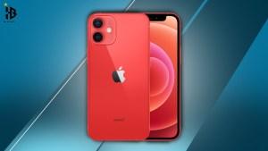apple i phone 12 mini