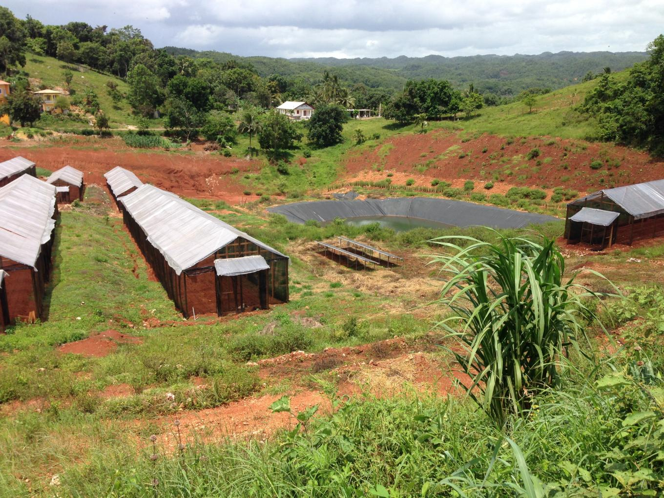 Five Caribbean Countries Seek To Improve Soil Quality By