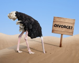 Ostriches Don't Get a Fair Deal in a Divorce
