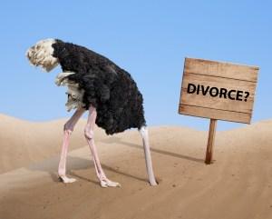 Ostriches Don't Get a Fair Deal in a Divorce