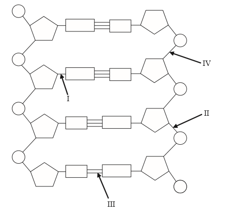 IB DP Biology Topic 2: Molecular biology 2.6 Structure of