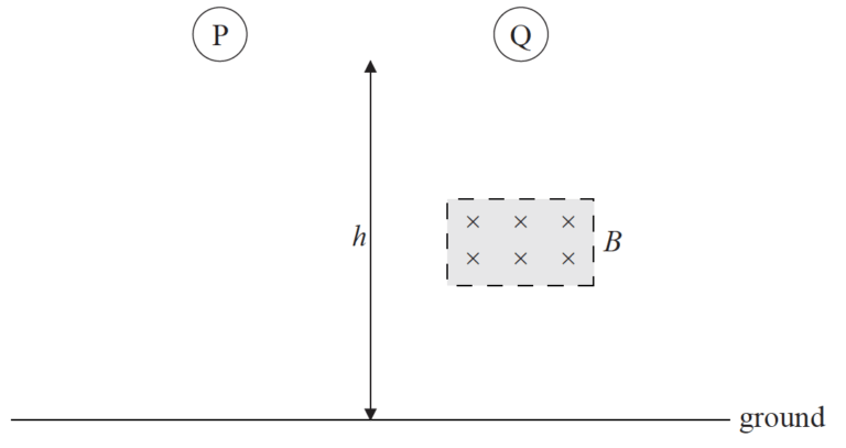 IB DP Physics 11.1