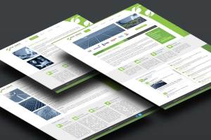 Ecologic Partners Website Design